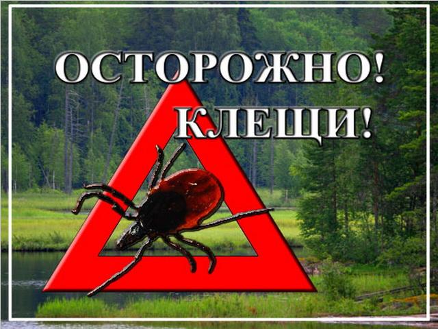 """Кочубеевский район """" jiiod_ok@mail.ru """" Page 106"""